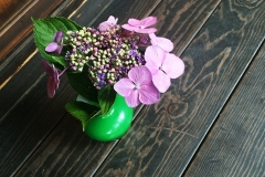 Tea-Culture_flowers_6